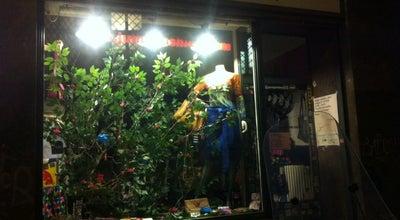 Photo of Tourist Attraction Julius FashionShop at Ostrovni 20, Prague 11000, Czech Republic