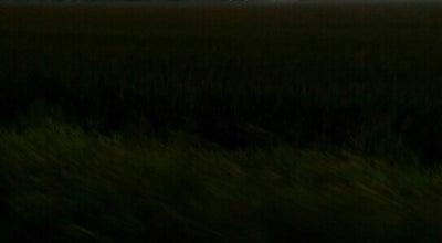 Photo of Trail Boschert Greenway at 3309 Kister Drive, St Charles, MO 63301, United States
