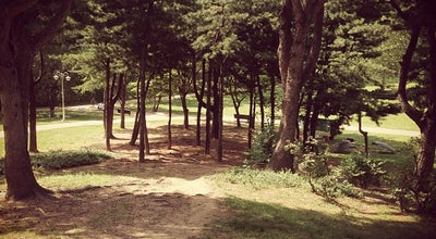 Photo of Park Yongsan Family Park at 용산구 용산동6가 68-87, Seoul 140-026, South Korea