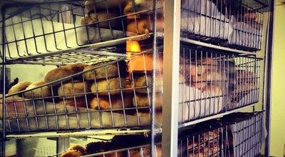 Photo of Cafe Bagel Face Bakery at 700 Main St, Nashville, TN 37206, United States
