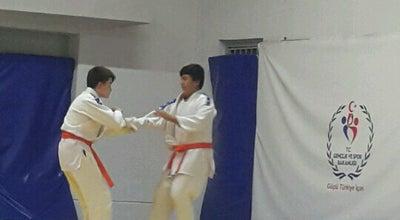 Photo of Martial Arts Dojo Yener Kahyalar Judo Salonu at Turkey