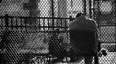 Photo of Baseball Field Roberto Clemente Field at Jersey City, NJ, United States