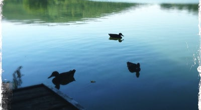 Photo of Lake Bánki-tó at Bánk 2653, Hungary