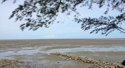 Photo of Beach ดอนหอยหลอด (Don Hoi Lot) at ทางหลวงชนบท สส.2003, Mueang Samut Songkhram 75000, Thailand