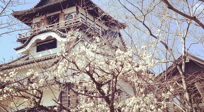 Photo of Castle 犬山城 (Inuyama Castle) at 犬山北古券65-2, 犬山市 484-0082, Japan