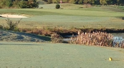 Photo of Golf Course Cattails at Meadowview at Kingsport, TN 37664, United States