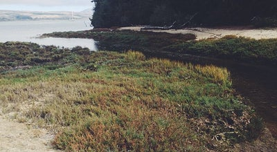Photo of Beach Shell Beach, Tomales Bay SP at Inverness, CA 94937, United States