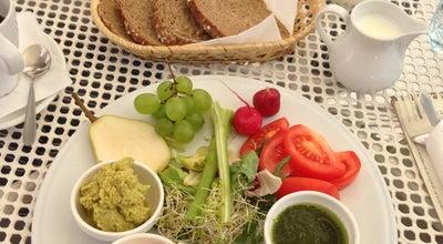 Photo of Polish Restaurant Cafe Mlynek at Pl. Wolnica 7, Krakow 31-060, Poland