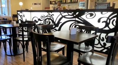 Photo of Cafe Café Podnebi at Údolní 5, Brno 602 00, Czech Republic