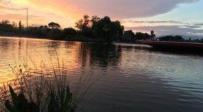 Photo of Lake Lago de la Ciudad Deportiva at Mexico