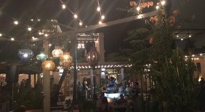 Photo of Eastern European Restaurant Villa Valentina at Paseo Malecon San Jose, San José del Cabo, Mexico