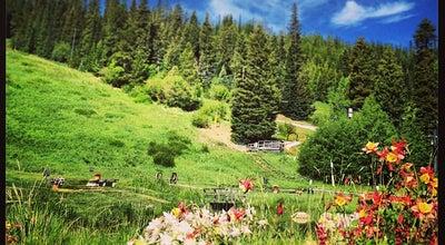 Photo of Ski Area Winter Park Resort at 85 Parsenn Rd, Winter Park, CO 80482, United States