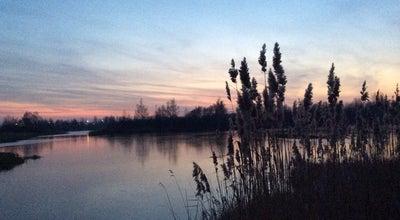 Photo of Lake Большие Сои at Брест, Belarus