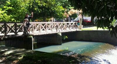 Photo of Botanical Garden Jardim Botânico Benjamin Maranhão at Av. Dom Pedro Ii, S/n, João Pessoa 58040-440, Brazil