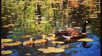 Photo of Botanical Garden Washington Park Arboretum at 2300 Arboretum Drive East, Seattle, WA 98195, United States