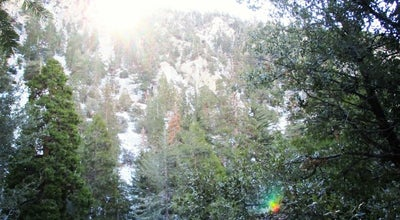 Photo of Trail Ice House Canyon at United States