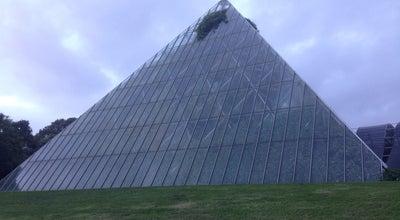 Photo of Garden Sydney Tropical Centre at Royal Botanical Gardens, Sydney, NS 2000, Australia