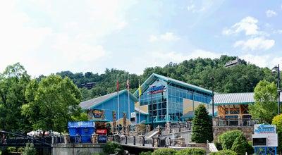 Photo of American Restaurant Ripley's Aquarium Feeding Frenzy Restaurant at 88 River Rd, Gatlinburg, TN 37738, United States