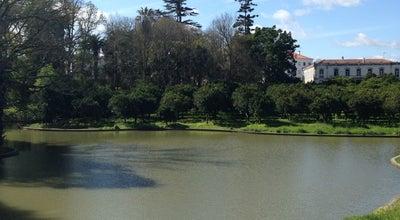 Photo of Field Cernache, Coimbra at Portugal