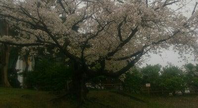 Photo of Baseball Field さきがけ八橋球場 at 八橋運動公園1-7, 秋田市 010-0974, Japan