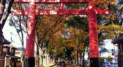 Photo of Trail 氷川参道 at 大宮区高鼻町 / 堀の内町, さいたま市, Japan