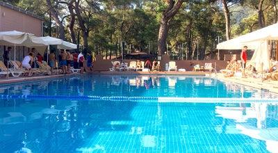 Photo of Water Park kırkağaç şehzadeler gençlik ve izcilik kampı havuz başı at Turkey