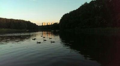 Photo of Lake Средний пруд ЦПКиО им. Белоусова at Russia