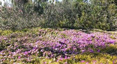 Photo of Trail Tustin Branch Trail / Esplanade Trail at Esplanade, Santa Ana, CA 92869, United States