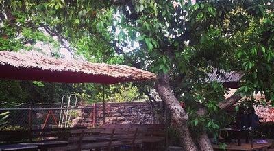 Photo of Beer Garden Café-Tal at Callejón Río Sonora, Atlixco, Mexico