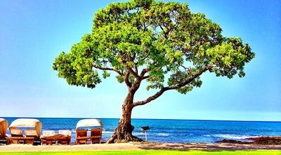 Photo of American Restaurant Beach Tree Bar & Grill at 72-100 Kaupulehu Dr, Kailua-Kona, HI 96740, United States