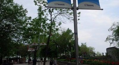 Photo of Harbor / Marina Harbour Square at 77, Toronto, On M5J 2S2, Canada