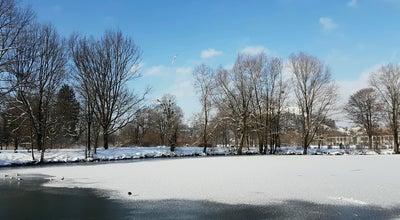 Photo of Lake Teich An Der Naturwissenschaftlichen Fakultät at Salzburg 5020, Austria