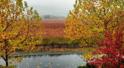 Photo of Tourist Attraction Groth Vineyards & Winery at 750 Oakville Cross Road, Oakville, CA 94562, United States