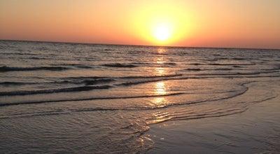 Photo of Beach Honeymoon Island State Park at 1 Causeway Blvd, Dunedin, FL 34698, United States