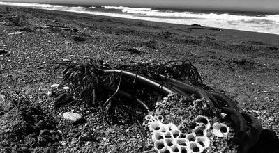 Photo of Beach irish beach at Irish Beach Dr, Manchester, CA, United States
