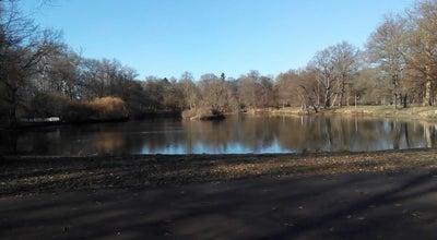 Photo of Lake Teich im Clara-Park at Scheibenholzweg, Leipzig 04107, Germany
