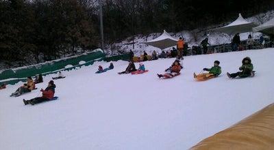 Photo of Theme Park 인천대공원 눈썰매장 at South Korea
