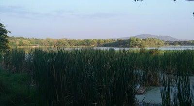 Photo of Lake Kukrahalli Lake at Campus Rd, Mysore, India