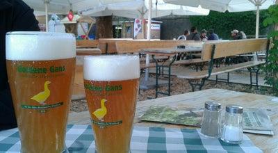 Photo of German Restaurant Goldene Gans - Fränkischer Biergarten at Burkarderstr. 2-4, Wurzburg 97082, Germany