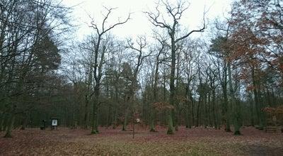 Photo of Trail Krugpark at Wilhelmsdorf, Germany