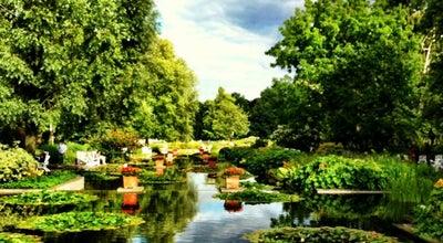 Photo of Botanical Garden Park Planten un Blomen at Messeplatz, Hamburg 20355, Germany