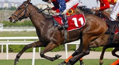 Photo of Racetrack İzmir Şirinyer Hipodromu at Aydın Hatboyu Cad., Buca 35390, Turkey