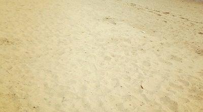 Photo of Beach Malibu Beach at Playstead Rd., Dorchester, MA 02125, United States
