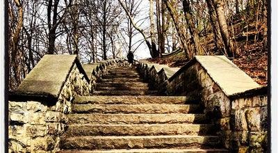 Photo of Scenic Lookout Großer Bunkerberg at Friedenstr., Berlin 10249, Germany