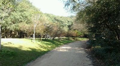 Photo of Other Great Outdoors Parque da Juventude at Avenida Cruzeiro Do Sul 2630, Sao Paulo 02030-100, Brazil