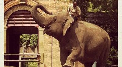 Photo of Zoo Audubon Zoo at 6500 Magazine St, New Orleans, LA 70118, United States