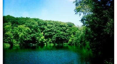 Photo of Lake Menotomy Rocks Park at Jason St., arlington, MA 02476, United States