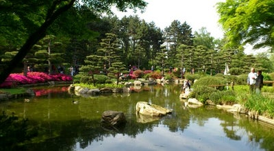 Photo of Garden Japanischer Garten at Nordpark, Düsseldorf 40474, Germany