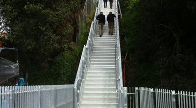 Photo of Trail Jacobs Ladder at New Zealand