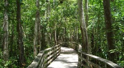 Photo of Other Venue Corkscrew Swamp Sancturary at 375 Sanctuary Rd, Naples, FL 34120